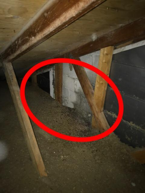 The Importance Of Having Your Attic Inspected